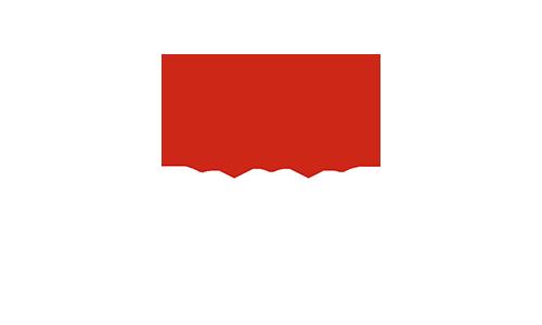 Erfahrungsberichte Action Coach